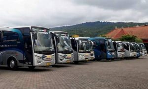 Paket Tour Wisata - Tirta Yatra Harian - Bali
